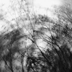 Composition. Long shutter speed
