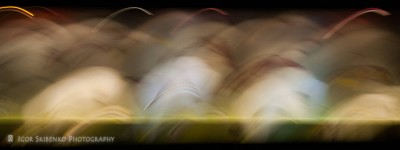 Composition. Night Motion
