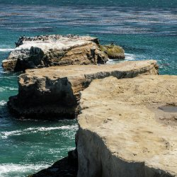 Santa Cruz 1206