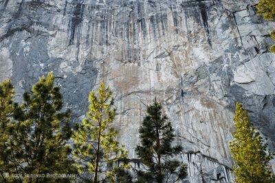Yosemite Park 2012