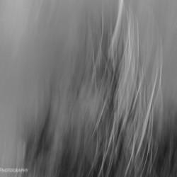 STL : Class on blur