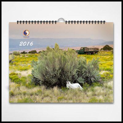 Calendar Sinclair 2016