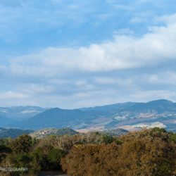 NAT : Northern California. Part One